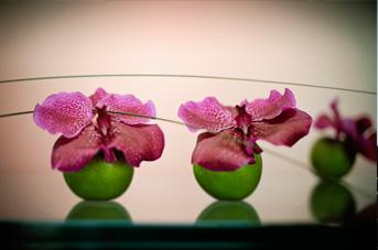 Firmaordning blomster